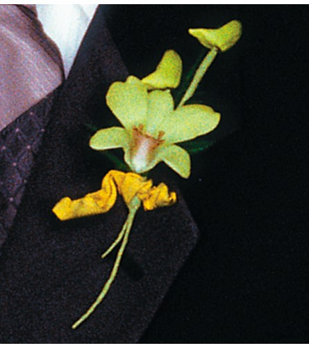 Cat's-Eye Green Orchid Boutonniere in Salt Lake City UT, Especially For You