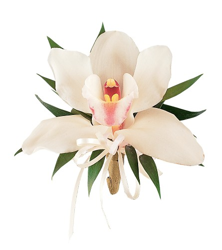Cymbidium Orchid Corsage in Oshkosh WI, Flowers & Leaves LLC