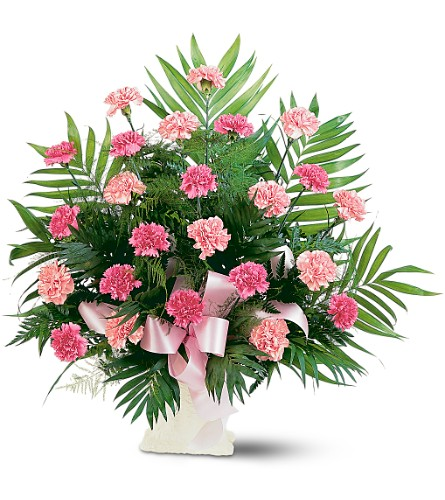 Classic Carnation Arrangement in Oklahoma City OK, Array of Flowers & Gifts