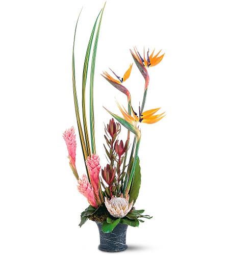 Tropical Paradise Arrangement in Abington MA, The Hutcheon's Flower Co, Inc.