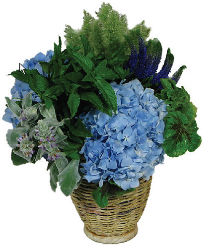 Seaside Garden Basket in New York NY, Fellan Florists Floral Galleria