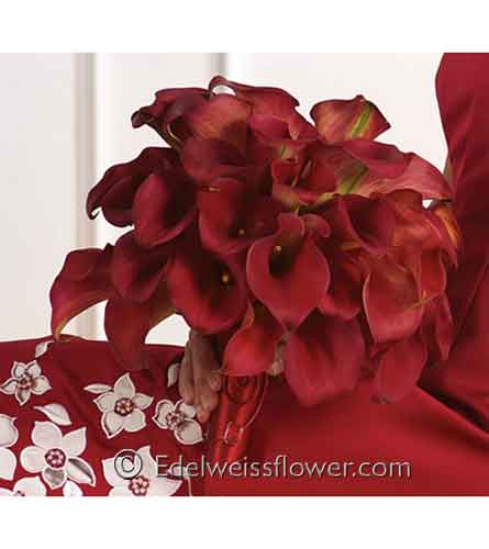 Red Calla Nosegay Floral Bouquet in Santa Monica CA, Edelweiss Flower Boutique