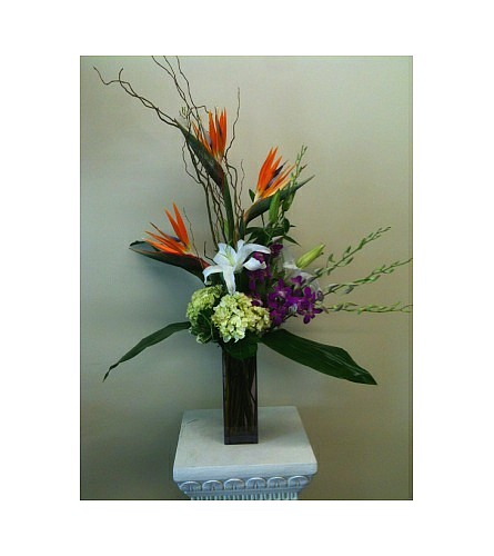 Tropic Memories in Naples FL, Gene's 5th Ave Florist