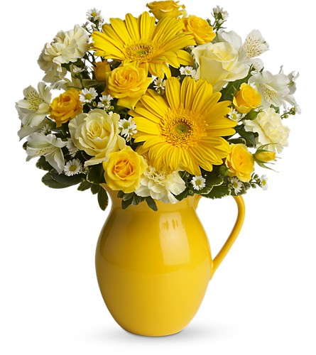 Teleflora's Sunny Day Pitcher of Cheer in Laurel MD, Rainbow Florist & Delectables, Inc.