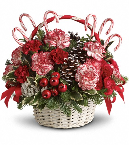 Candy Cane Christmas in Fort Worth TX, TCU Florist