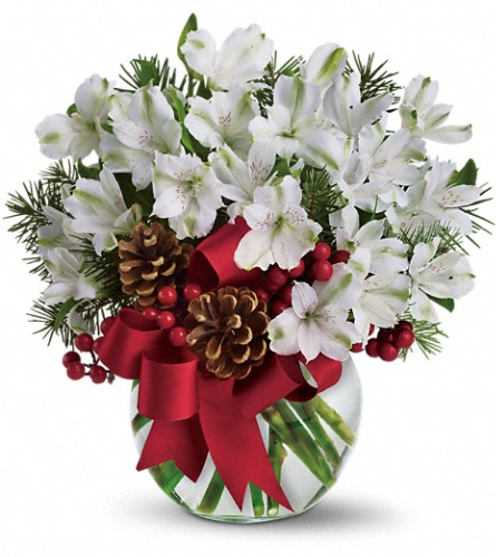 Let It Snow in Jacksonville FL, Hagan Florists & Gifts