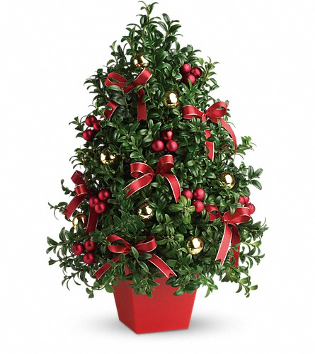 Deck the Halls Tree in Huntington WV, Spurlock's Flowers & Greenhouses, Inc.