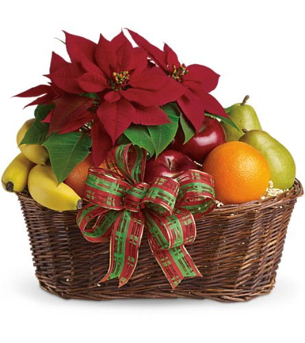 Fruit and Poinsettia Basket in Houston TX, Blackshear's Florist