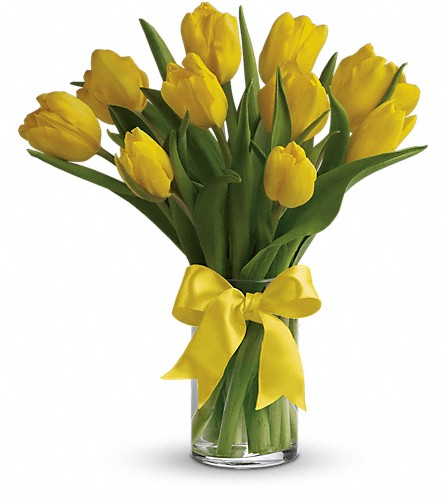 Sunny Yellow Tulips in West Bend WI, Bits N Pieces Floral Ltd
