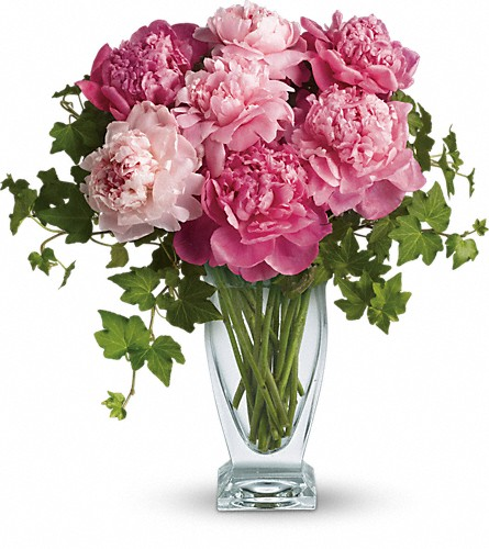 Teleflora's Perfect Peonies in Needham MA, Needham Florist