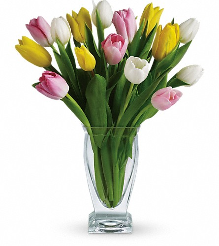 Teleflora's Tulip Treasure in Needham MA, Needham Florist