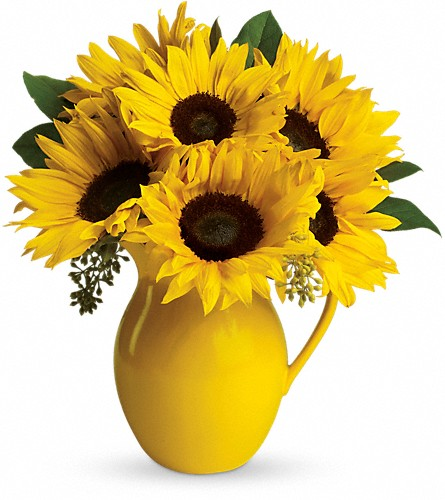 Teleflora's Sunny Day Pitcher of Sunflowers in Redwood City CA, A Bed of Flowers