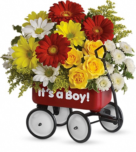 Baby's Wow Wagon by Teleflora - Boy in Sapulpa OK, Neal & Jean's Flowers & Gifts, Inc.