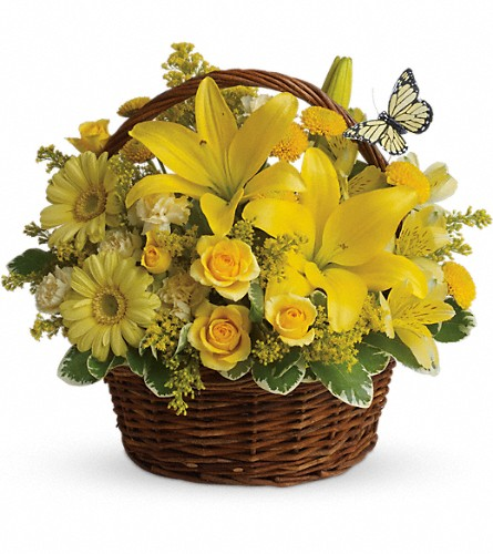 Basket Full of Wishes in Medicine Hat AB, Crescent Heights Florist