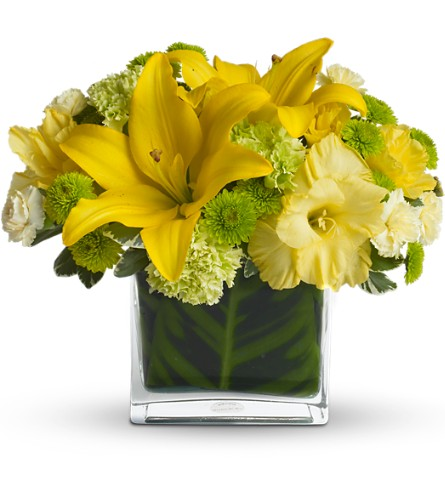Oh Happy Day by Teleflora in Tyler TX, Country Florist & Gifts