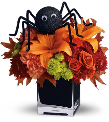 Teleflora's Spooky Sweet in Naples FL, Gene's 5th Ave Florist