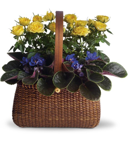 Garden To Go Basket in Vancouver BC, Purple Rainbow Florist