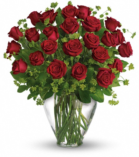 My Perfect Love - Long Stemmed Red Roses in Aston PA, Blair's Florist