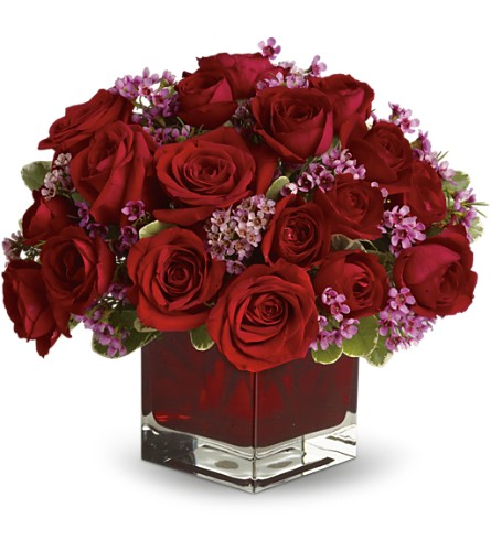 Never Let Go by Teleflora - 18 Red Roses in DeKalb IL, Glidden Campus Florist & Greenhouse