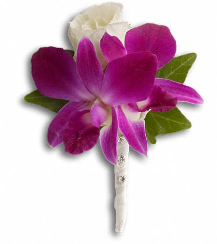 Fresh in Fuchsia Boutonniere in Lewistown MT, Alpine Floral Inc Greenhouse