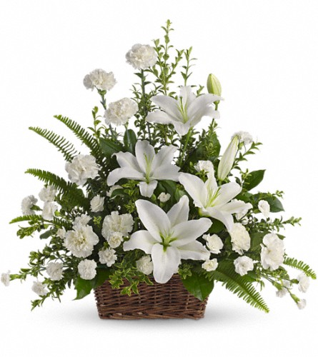Peaceful White Lilies Basket in Weymouth MA, Bra Wey Florist