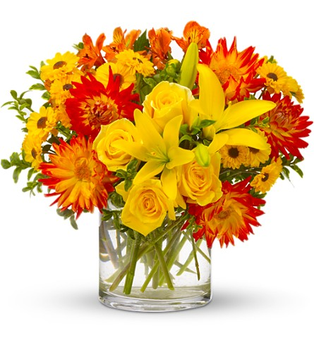 Summer Samba in usa-send-flowers NJ, Stanley's America's Florist & Gifts