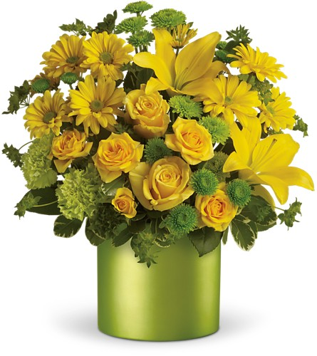 Teleflora's Say It With Sunshine in Blackwood NJ, Chew's Florist