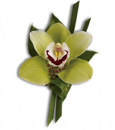 Green Orchid Boutonniere in West Los Angeles CA, Westwood Flower Garden