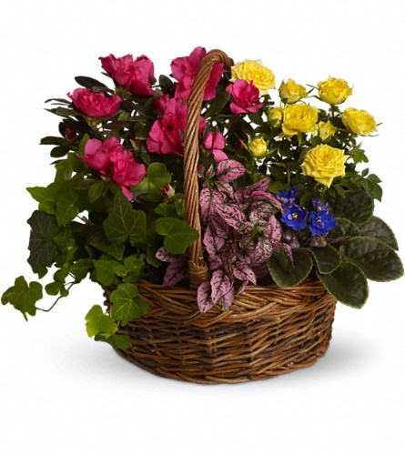 Blooming Garden Basket in New York NY, Fellan Florists Floral Galleria