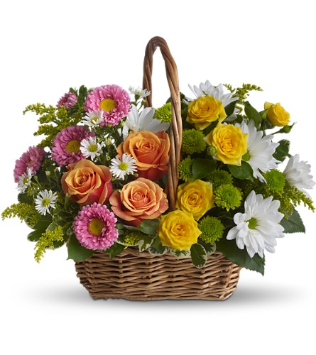 Sweet Tranquility Basket in San Bruno CA, San Bruno Flower Fashions
