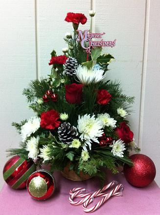 Stein Christmas Arrangement in Burlington NJ, Stein Your Florist
