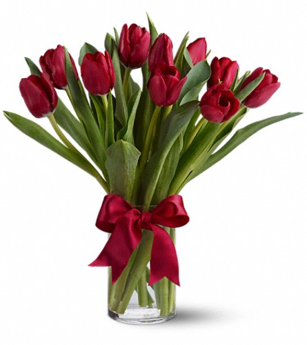Radiantly Red Tulips in San Bruno CA, San Bruno Flower Fashions