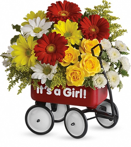 Baby's Wow Wagon by Teleflora - Girl in Royal Oak MI, Rangers Floral Garden