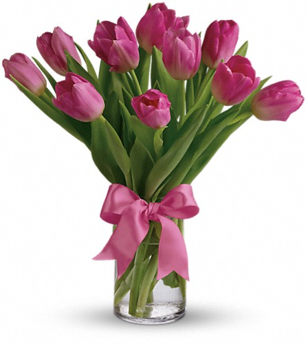Precious Pink Tulips in West Chester OH, Petals & Things Florist