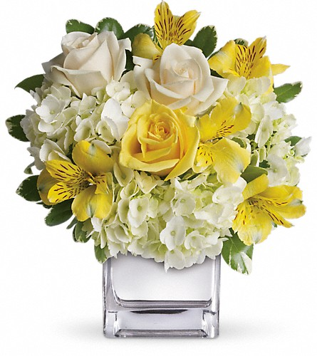 Teleflora's Sweetest Sunrise Bouquet in Houston TX, Village Greenery & Flowers