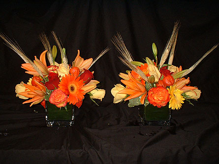Fall Cube Duo in Dallas TX, Z's Florist