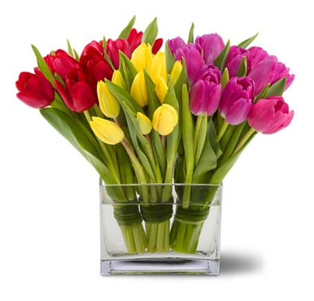 Rancho santa fe florist rancho santa fe flowers and gifts tulips together in rancho santa fe ca rancho santa fe flowers and gifts negle