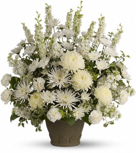 Teleflora's Pure and True in Gainesville FL, Floral Expressions Florist