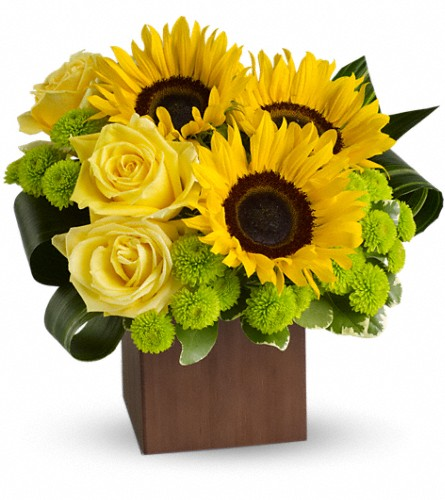 Teleflora's Sunflower Fantasy in Bakersfield CA, White Oaks Florist