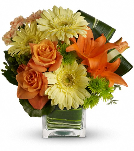 Teleflora's Citrus Crush in Bakersfield CA, White Oaks Florist