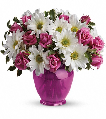 Teleflora's Pink Daisy Delight in Huntington WV, Spurlock's Flowers & Greenhouses, Inc.