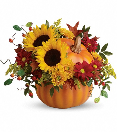 Teleflora's Pretty Pumpkin Bouquet in Rockford IL, Cherry Blossom Florist