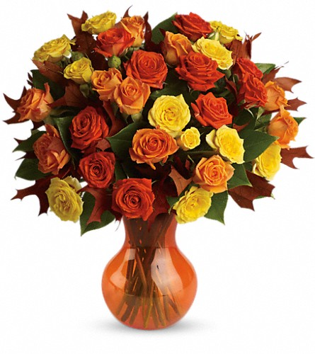 Teleflora's Fabulous Fall Roses in Eugene OR, Rhythm & Blooms