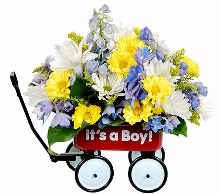 Felly's Baby's First Wagon, Boy in Madison WI, Felly's Flowers