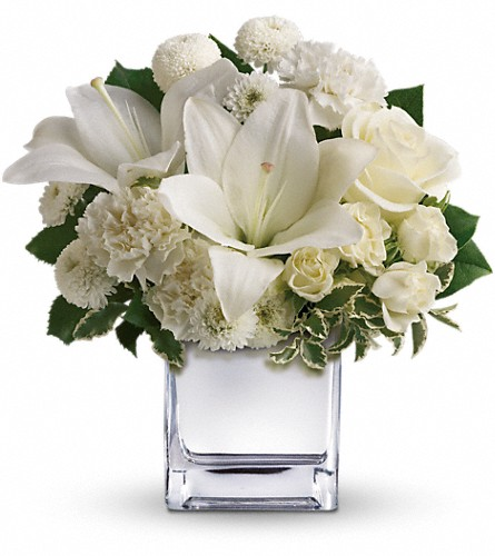 Teleflora's Peace & Joy Bouquet in Chicago IL, Hyde Park Florist