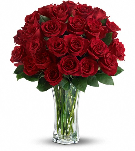 Love and Devotion - Long Stemmed Red Roses in Fort Worth TX, TCU Florist