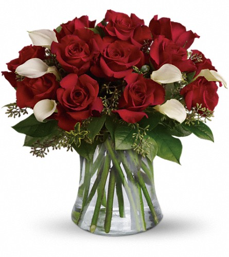 Be Still My Heart - Dozen Red Roses in Jacksonville FL, Deerwood Florist