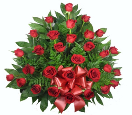 Signature Traditional Rose Spray in Indianapolis IN, Steve's Flowers & Gifts