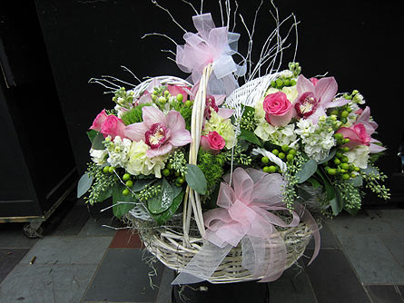 Baby Twin Girls in New York NY, Fellan Florists Floral Galleria
