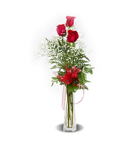 LOVES ROSES in Gainesville FL, Floral Expressions Florist
